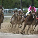 Betting Fans Go Crazy at the Races