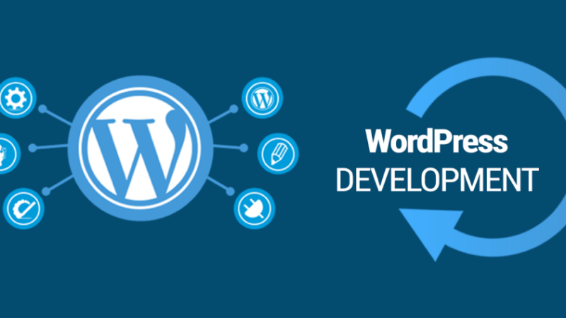 The importance of WordPress Development Services