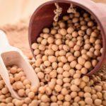 Soybean Manufacturer