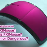 [PXIMouse] What is PXIMouse? Is it Useful or Dangerous?